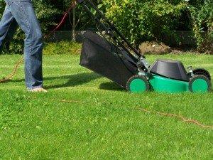 Mowing Zoysia Lawn