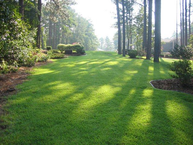 Lawn Mowing The Zoysia Farm Nurseries Blog