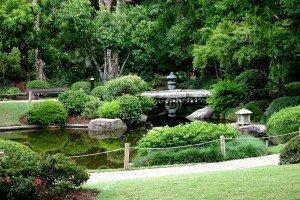 japanese-garden-96078